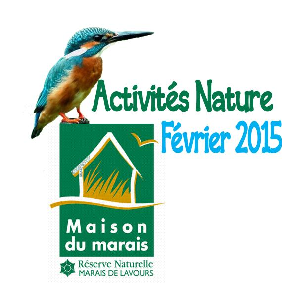 reserve-marais-de-lavours