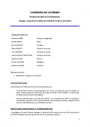 CR_21_04_22_projet_RT14_Ceyzerieu